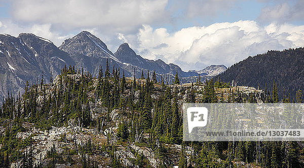 A hill side covered with trees is seen in a foreground as high mountain peaks are seen in the background. This is a popular area for backpacking due to its beautiful views and relatively easy access from a logging road  Pemberton  British Columbia  Canada