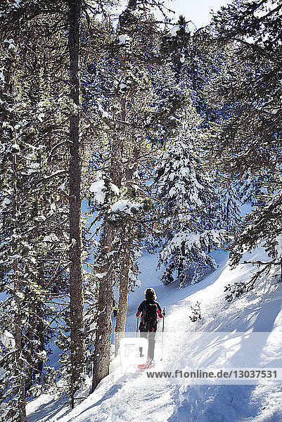 Rear view shot of a woman snowshoeing in a forest in winter