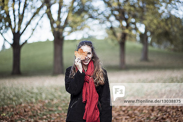 Portrait of smiling woman holding maple leaf while standing on field