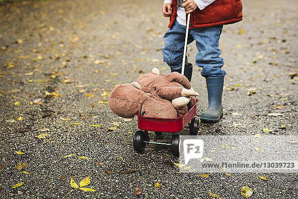 Niedriger Teil eines Jungen  der einen Spielzeugkarren mit Stofftieren auf der Straße schiebt