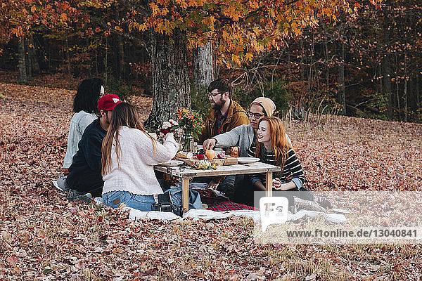 Freunde bei Tisch auf dem Feld