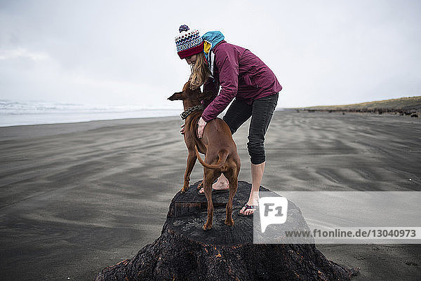 Playful woman standing with dog on log at beach against sky