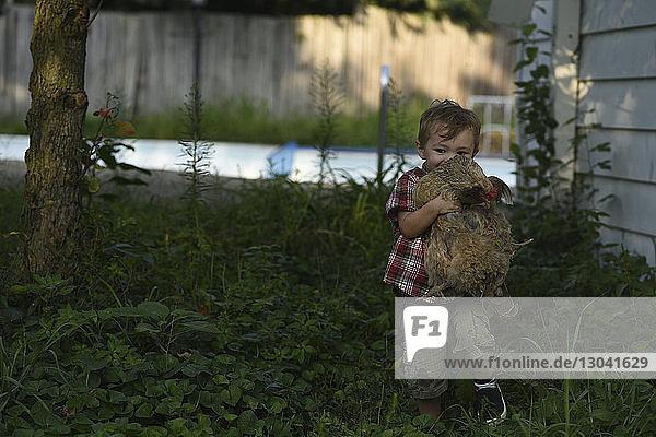 Cute boy carrying hen while walking on field