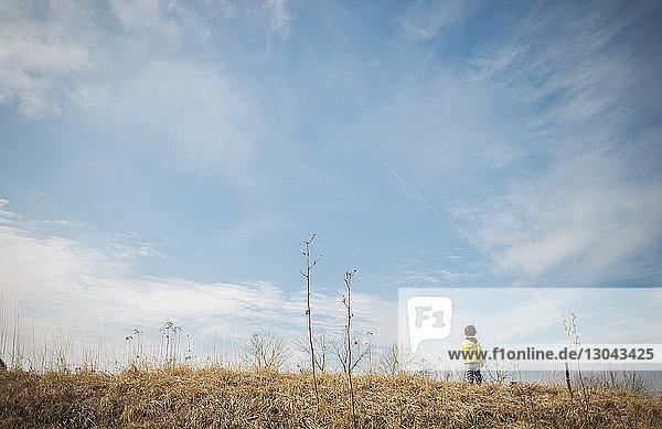 Rückansicht eines Jungen  der auf einem Grasfeld vor blauem Himmel steht