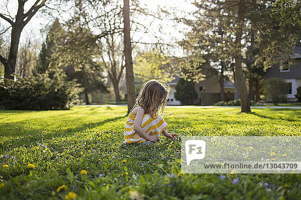 Girl picking flowers while crouching in backyard