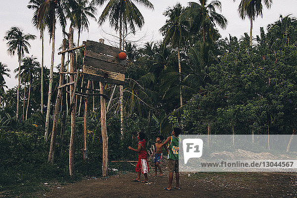 Boys playing basket ball on field amidst trees
