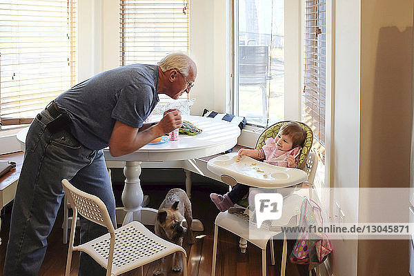 High angle view of grandfather playing with granddaughter sitting on high chair at home