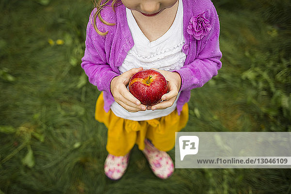 High angle view of girl holding apple while standing in orchard