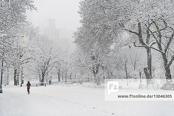 Rückansicht einer Frau  die auf einem schneebedeckten Feld geht