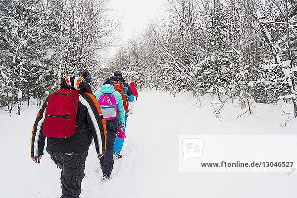 Rückansicht von Skifahrern  die auf einem schneebedeckten Feld laufen