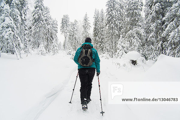 Rückansicht von Skifahrern  die auf schneebedecktem Feld gegen Bäume laufen
