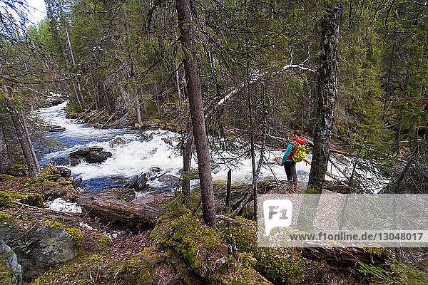 Hochwinkelaufnahme einer weiblichen Wanderin  die auf Felsen im Wald steht