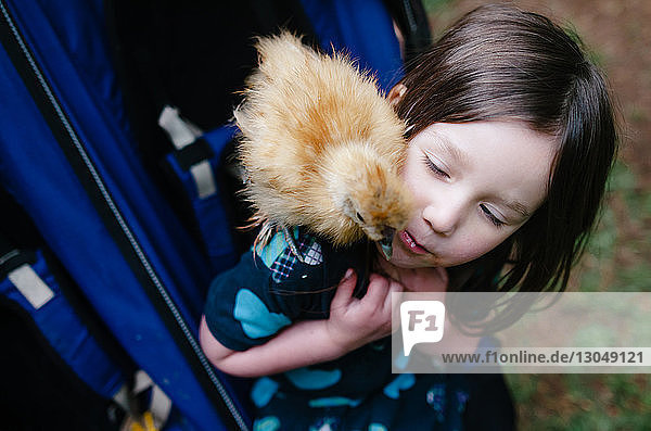 High angle view of baby chicken on girl's shoulder at park in baby carriage, High angle view of baby chicken on girl's shoulder at park in baby carriage