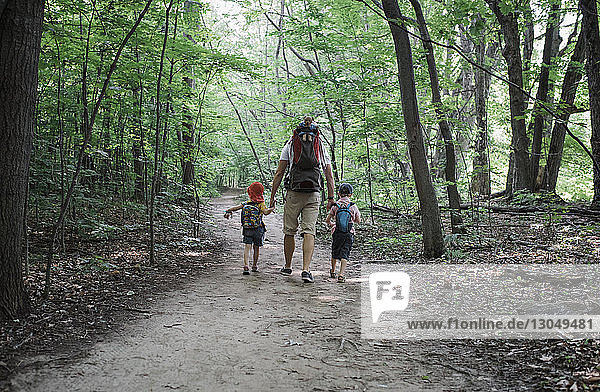 Rear view of father holding children's hands while walking on road in forest