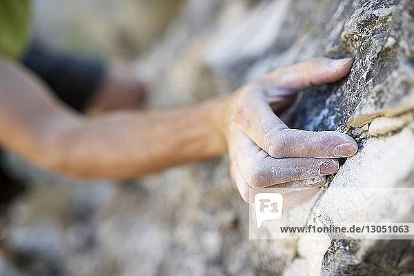 Cropped image of man climbing rock