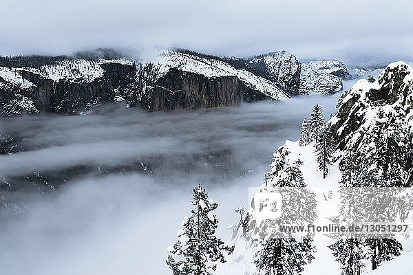 High angle view of trees and mountains during foggy weather at Yosemite National Park