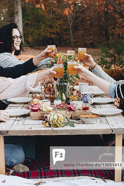 Friends toasting drinks while sitting at table on field