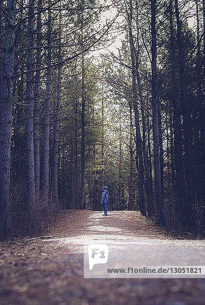 Junge in voller Länge auf Feldweg inmitten von Wald stehend
