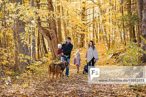 Vierköpfige Familie und Hund im Wald