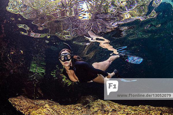 Cenotentauchen  Cenote Crystalino  Tulum  Quintana Roo  Mexiko