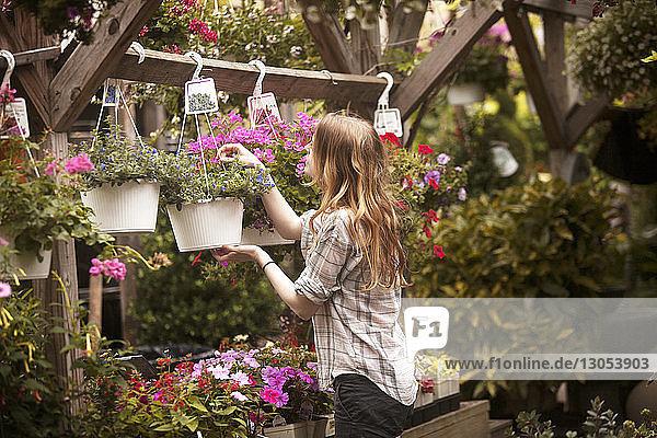 Seitenansicht einer Frau  die im Laden hängende Topfpflanzen betrachtet