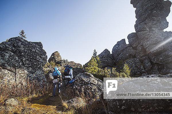 Männliche Freunde wandern auf Berg gegen klaren Himmel