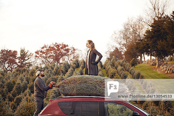 Man holding pine tree in net while looking at woman standing on car