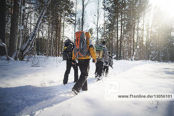 Rear view of hikers walking in snow covered forest during sunny day