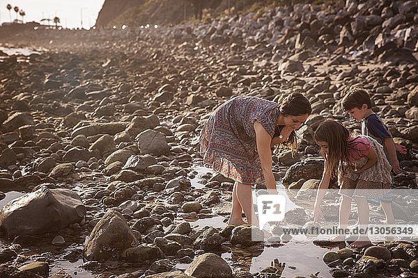 Familie bückt sich  während sie bei Sonnenuntergang am Strand steht
