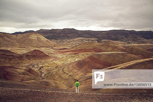 Rückansicht eines Wanderers  der auf einem Feld in der Wüste steht