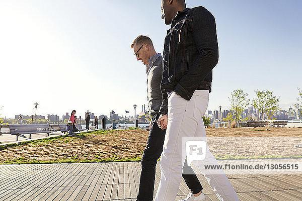 Side view of boyfriends walking on footpath in park
