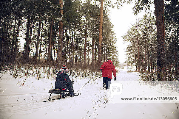 Großmutter rodelt Schlittenjunge im schneebedeckten Wald