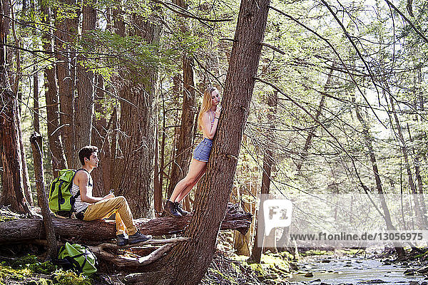 Woman leaning on tree while man sitting on fallen tree trunk