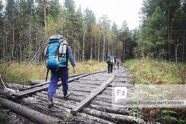 Rear view of male hiker walking on logs in forest