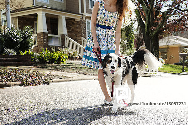 Low section of woman stroking dog while standing on street