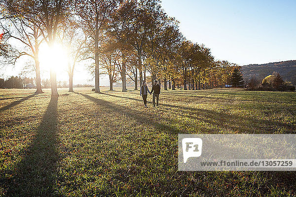 Paar hält sich beim Gehen auf dem Feld an den Händen