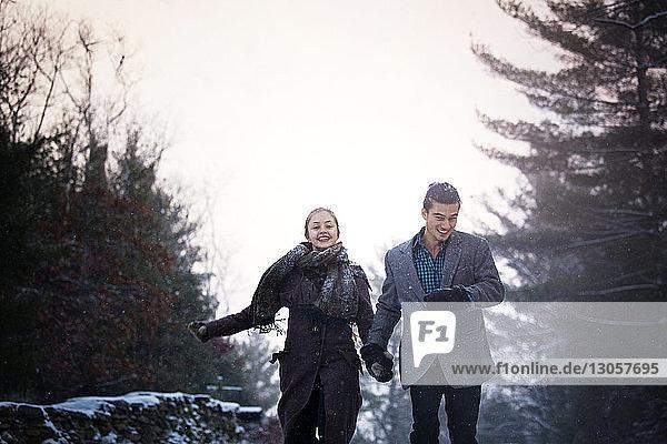 Glückliches Paar hält sich an den Händen und geht im Wald gegen den Himmel