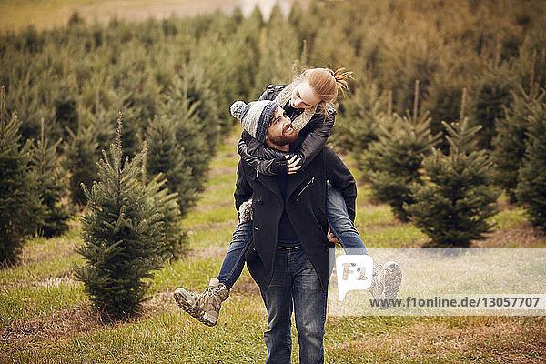 Man piggybacking woman while walking in pine tree farm