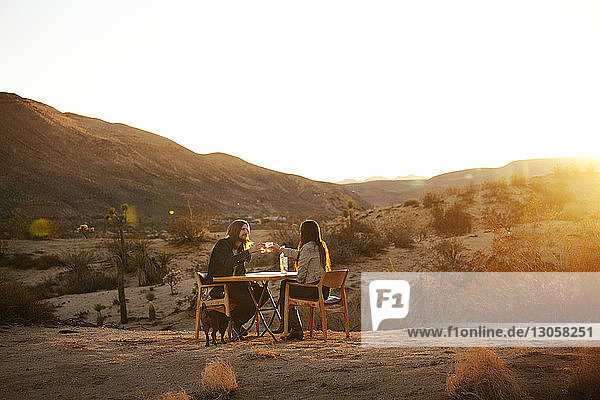 Couple drinking alcohol while sitting on chairs at field