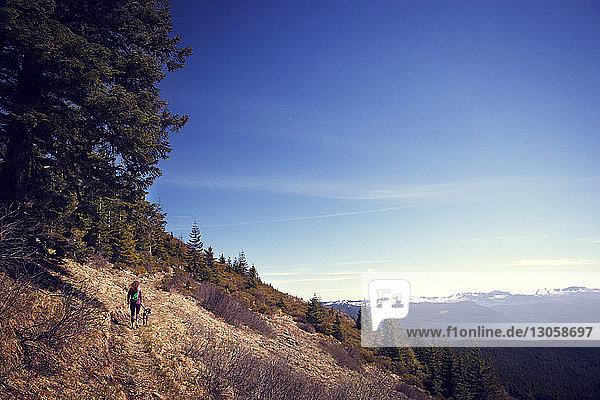 Hochwinkelaufnahme eines Wanderers  der mit Hund auf einem Berg gegen blauen Himmel läuft
