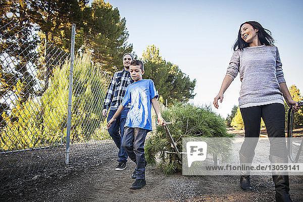 Junge zieht Wagen  während er mit seinen Eltern auf der Straße unterwegs ist
