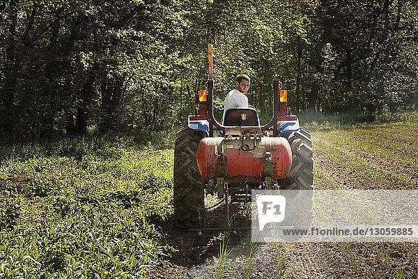 Farmer spraying fertilizer on agriculture field