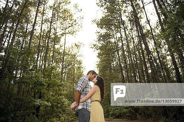Paar küsst sich  während es im Wald an Bäumen steht