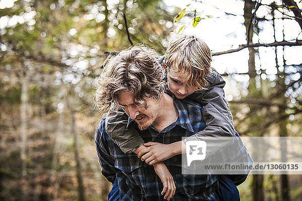 Vater reitet Sohn huckepack im Wald