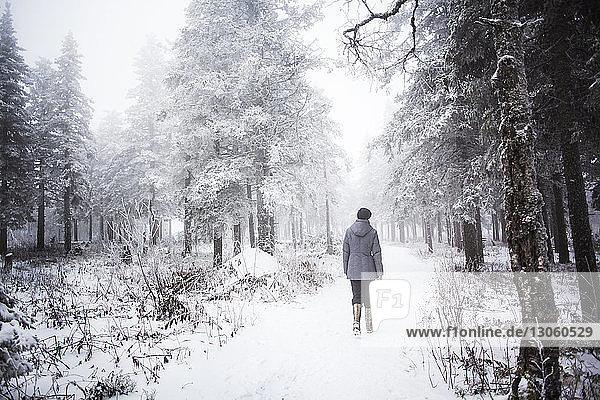 Rückansicht einer Frau  die im schneebedeckten Wald spazieren geht
