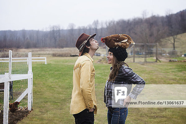 Couple playing with chicken while standing at farm