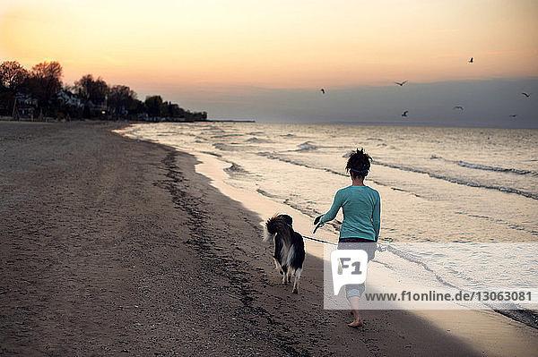 Rückansicht einer Frau  die bei Sonnenuntergang mit Hund am Meeresufer spazieren geht