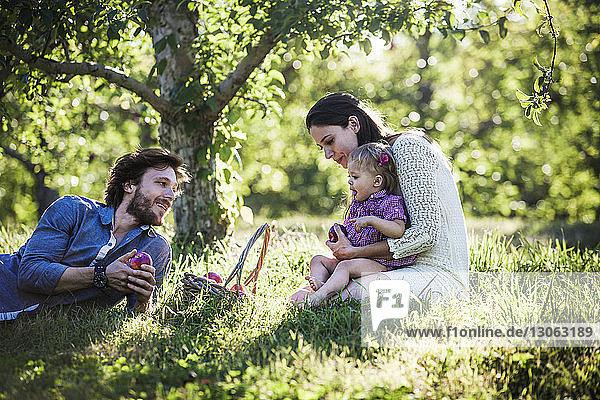 Glückliche Familie mit Apfelkorb im Obstgarten