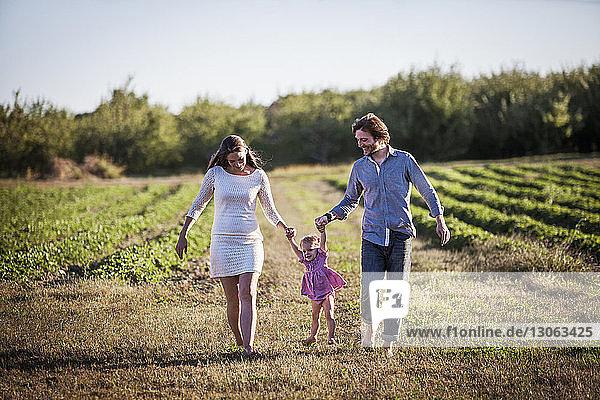 Glückliche Familie geht auf dem Feld im Bauernhof gegen den Himmel