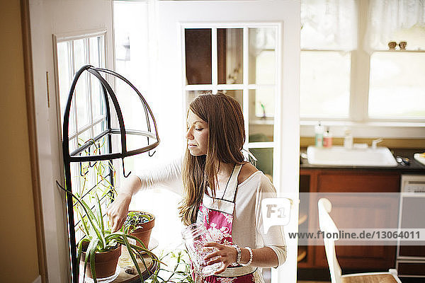 Woman looking at potted plant while standing by window at home